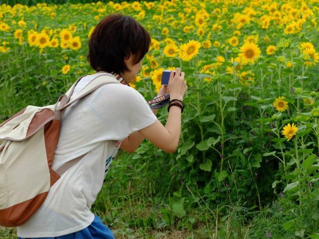 Camera Walking in Japan