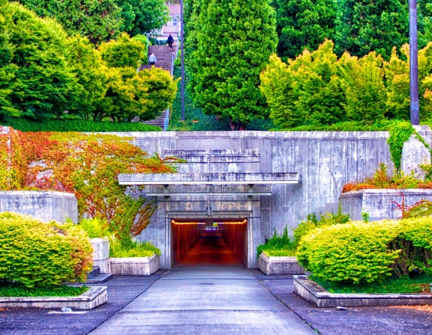Tunnel to Lake Washington