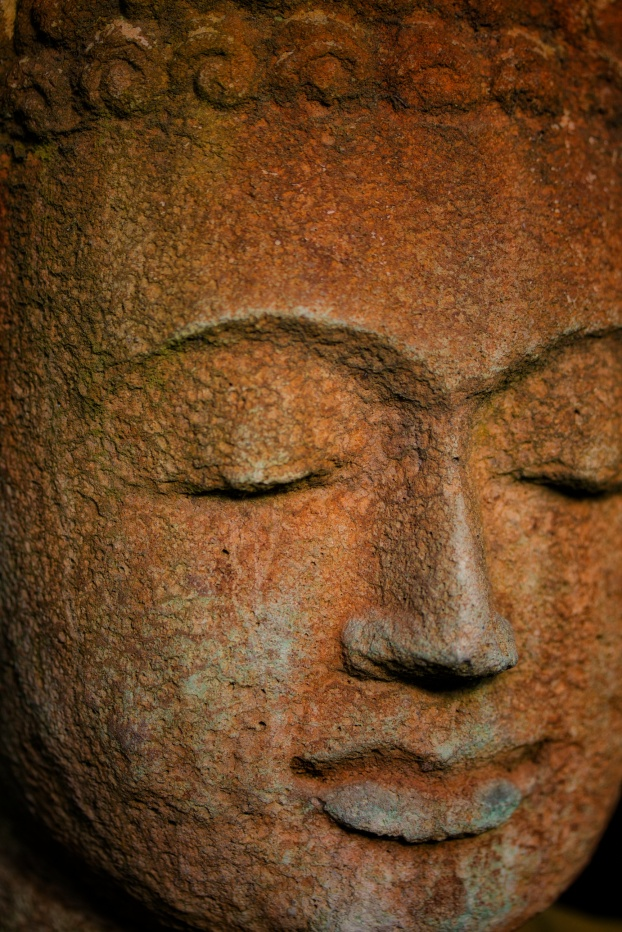 Peaceful Face Macro ISO 200 f2.8