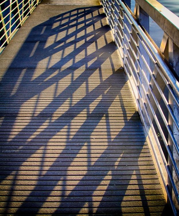 Sun Reflections, South Lake Union