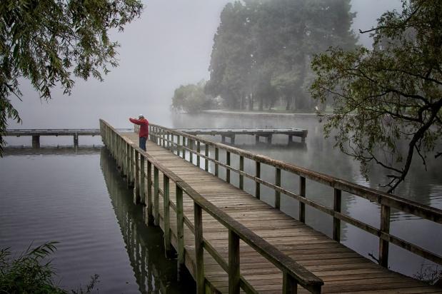 Foggy Morning Exercise