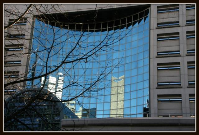 Window To The City