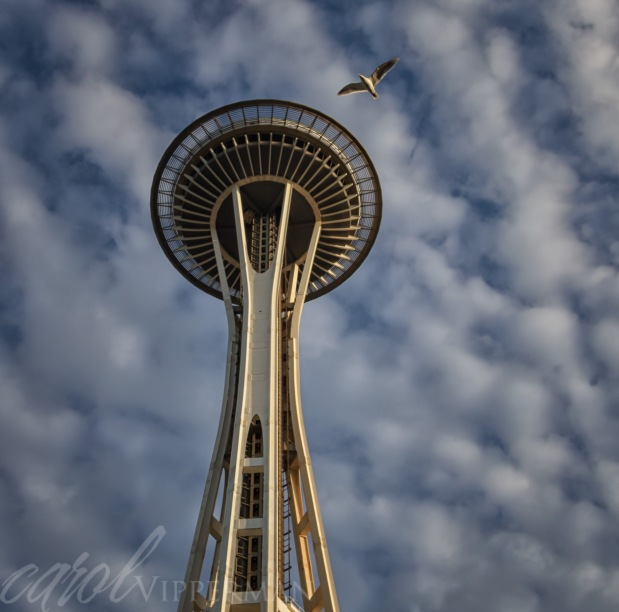 Seattle - Number 7!