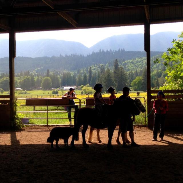 Barn and Horse mod