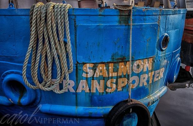 Salmon Transporter