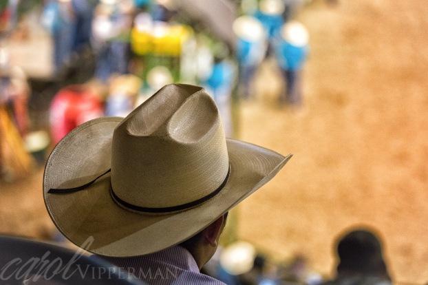 One Cowboy