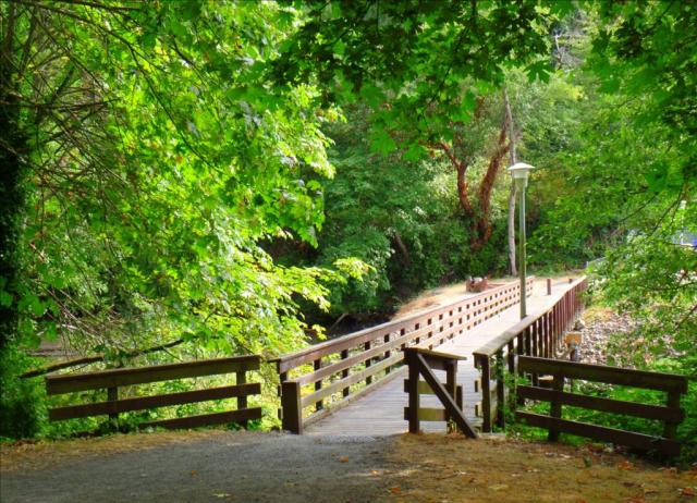 Waterfront Park Bridge